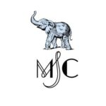 MSC Kombucha